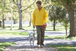 dog-walk image